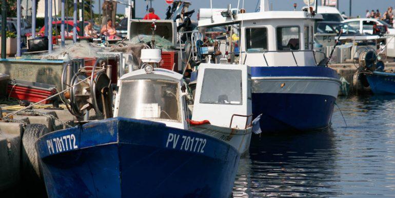 Port-Saint-Cyprien-68